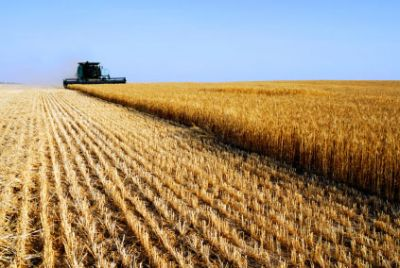agricoltura - I