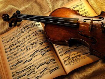 violino musica Q
