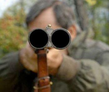 A Morsasco la caccia al cinghiale finisce tra le case. La denuncia delle guardie zoofile