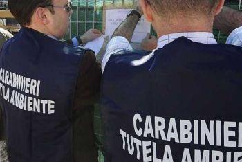 Alessandria, azienda controllata dai carabinieri del Noe finisce nei guai