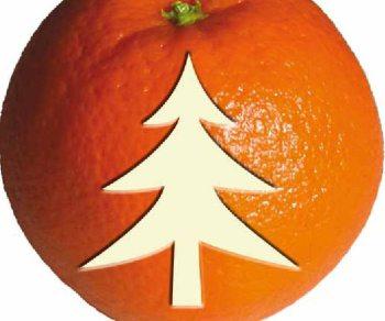 """Al via la campagna """"Arance di Natale, arance per la vita"""""""