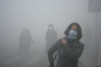 smog - Q