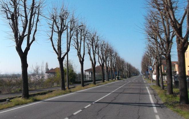 Lavori all'illuminazione pubblica a Pontecurone