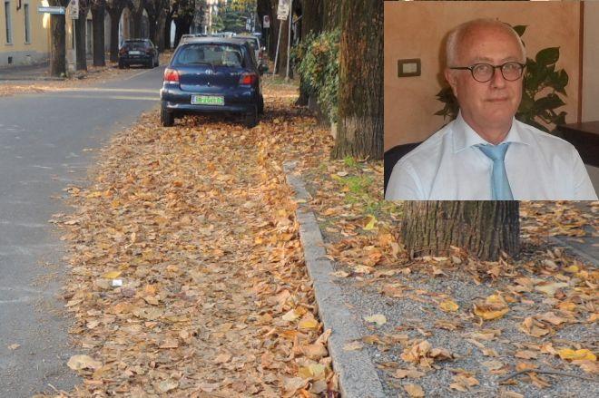 """La """"Cappella"""" di Semino sulle foglie: """"Abbiamo detto di sospendere la raccolta da ottobre…"""""""