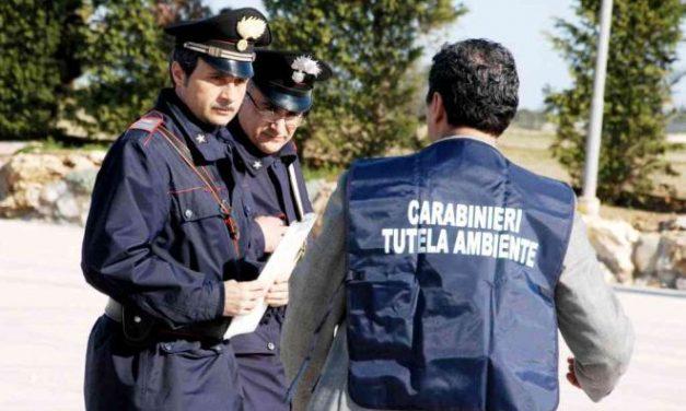 I carabinieri del Noe di Alessandria multano due aziende perché non rispettato la normativa sui rifiuti