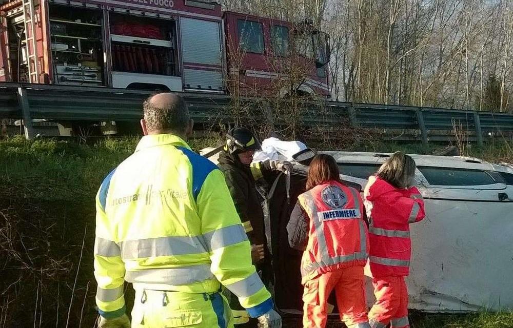 Auto fuori strada a Tortona, muore un cane