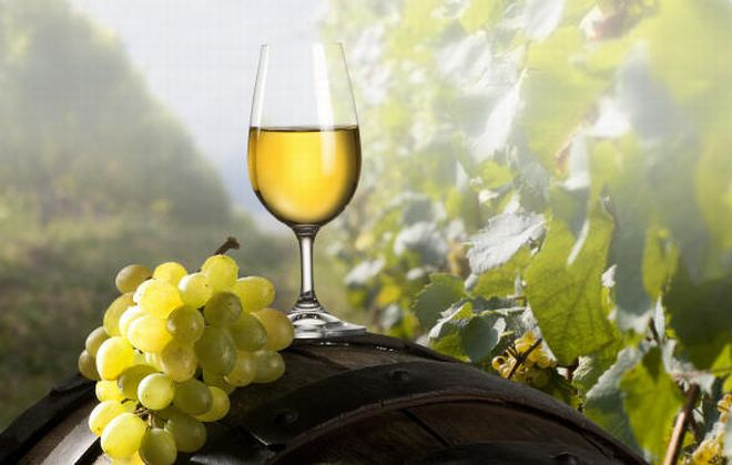 A Varsavia il vino delle aziende alessandrine della Cia