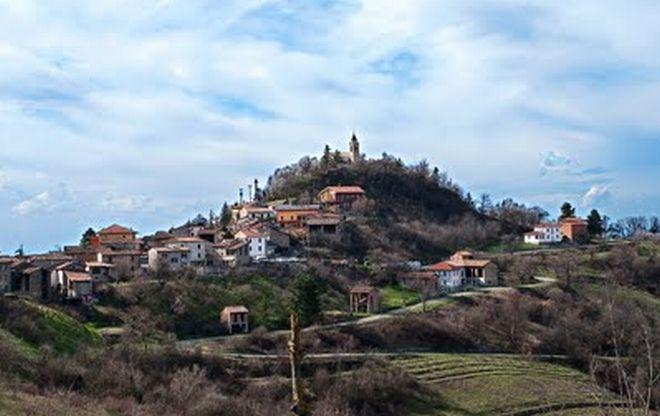 Che belle le ginestre vicino ad Avolasca!!