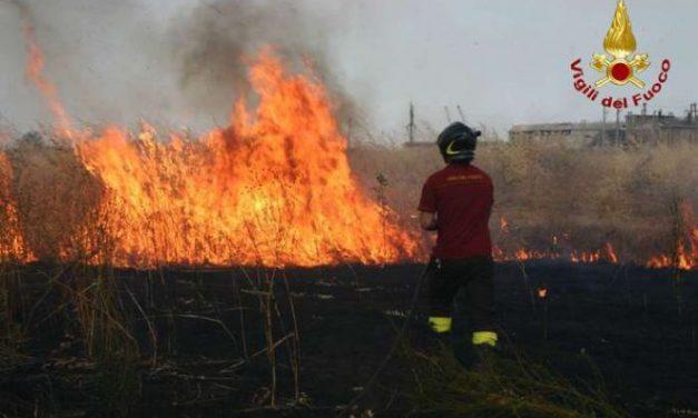 Maxi incendio a Spinetta Marengo nei pressi della Città della Moda, impegnate diverse squadre dei Vigili del Fuoco