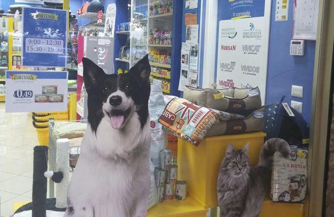 Un concorso gratuito per gli amanti degli animali al negozio Fortesan di Diano Marina