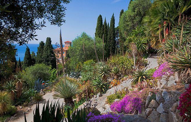 Ai Giardini Hambury di Ventimiglia un corso di acquerello Botanico