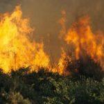 Si incendiano i boschi della val Borbera, a fuoco dieci ettari di vegetazione