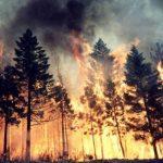 Che fine ha fatto la termo-camera per impedire gli incendi boschivi nel Ponente Ligure?