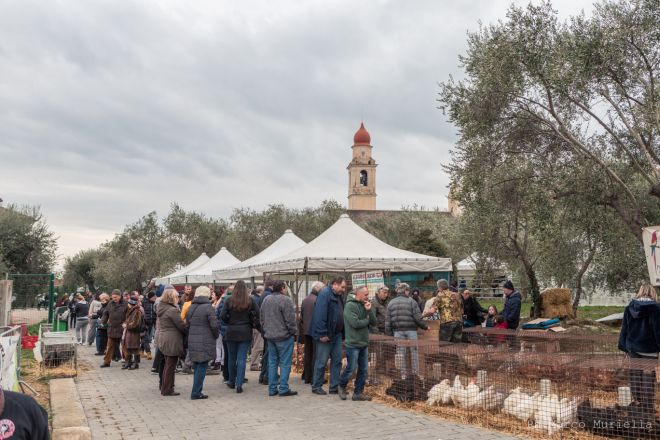 Per Arti & Sapori e la Fiera della Candelora, migliaia di persone attese a San Bartolomeo al Mare