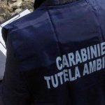 I Carabinieri del Noe controllano il depuratore di Vallecrosia