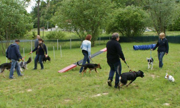 Ad Acqui Terme sorgeranno 4 nuove aree per i cani