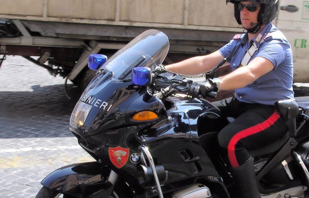 I Carabinieri intervengono per salvare un cucciolo legato e denutrito a Ceriana