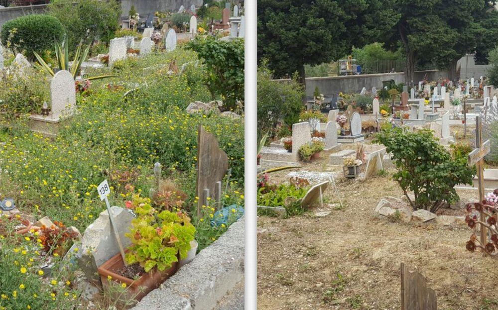 A Imperia i migranti puliscono i cimiteri di Oneglia e Porto