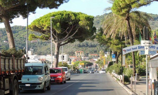 A Diano Marina si potano gli alberi del centro, scatta il divieto di sosta in molte vie