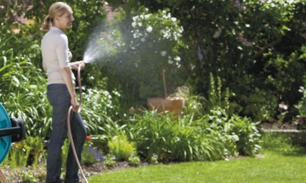C'é siccità, Il Comune di Tortona vieta di annaffiare giardini e prati, di lavare l'auto in casa e riempire piscine private
