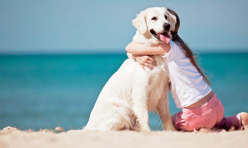 Un'iniziativa a sostegno del canile di Tortona