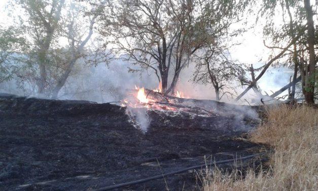 Incendi: clima anomalo, le fiamme divampano anche in provincia di Alessandria