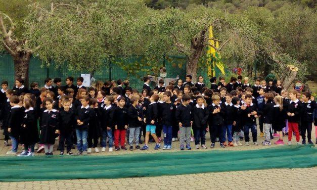 Gli alunni della scuola Alba Filipponi di San Bartolomeo hanno imparato come si raccolgono le olive