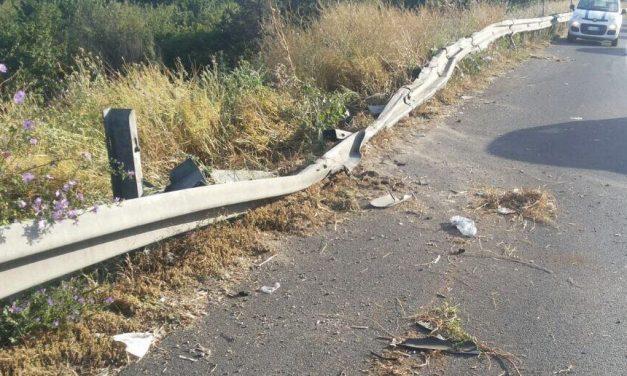 Castelnuovo Scrivia, giovane ragazza travolge un cane alla guida dell'auto e finisce contro il guard rail