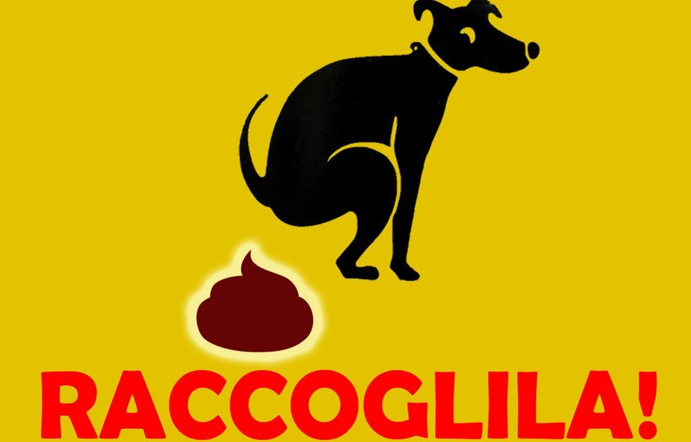 Multe minime da 100 euro a Taggia a chi non raccoglie le deiezioni di cani