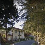 Alberi tagliati a Dernice, in Val Curone, un lettore ritorna sulla questione