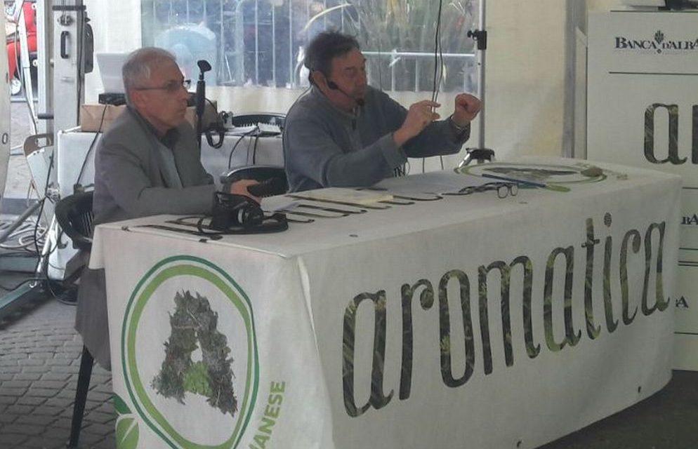 """Diano Marina sta preparando la nuova edizione di """"Aromatica"""""""