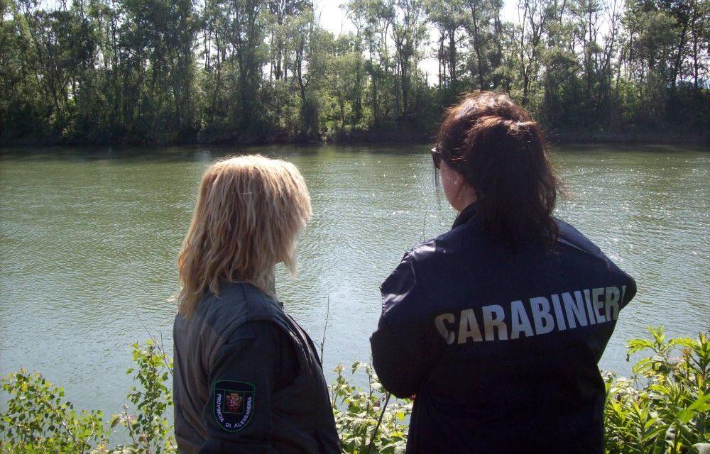 Troppa pesca abusiva su Tanaro e Bormida in provincia di Alessandria, i Carabinieri forestali intensificano i controlli