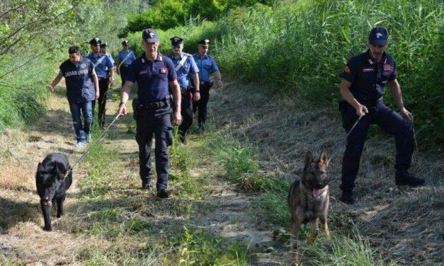Il parco di Castelnuovo Scrivia centro di smistamento della droga del Nord Italia. I Carabinieri sgominano una gang di 30 persone