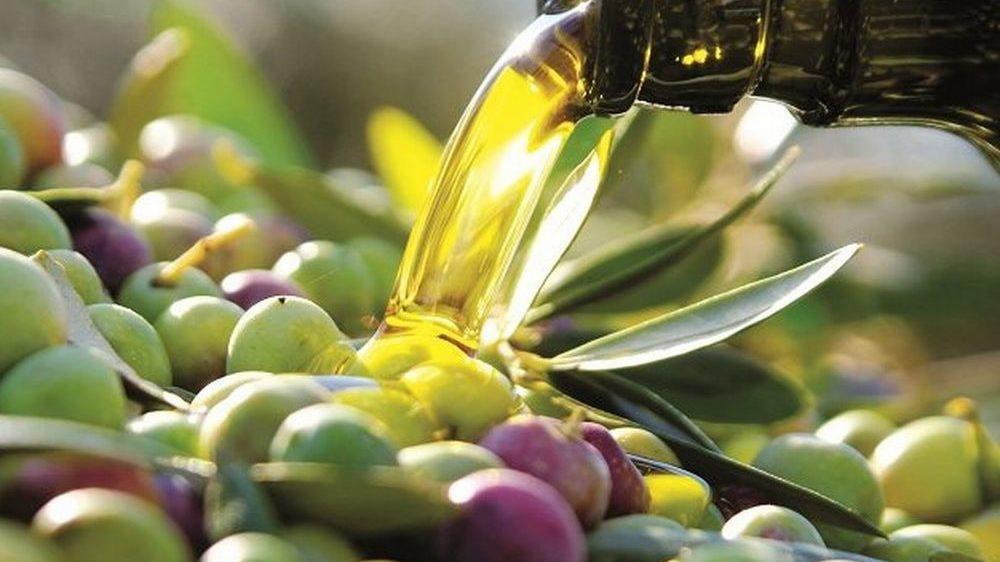 L'olio dop del Ponente Ligure alla ribalta a Genova