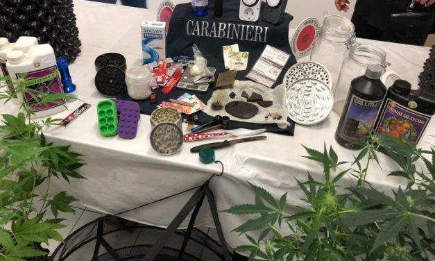 I carabinieri di Diano Marina arrestano spacciato di droga e sequestrano tutta questa roba