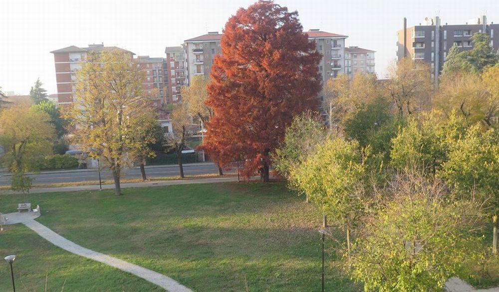 Tortona, zona Oasi, dalla prossima settimana la nuova raccolta dei rifiuti
