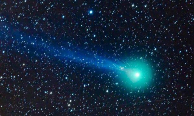 """Stasera dalle 22 arriva """"Iwamoto"""", la cometa di San Valentino da vedere in diretta"""
