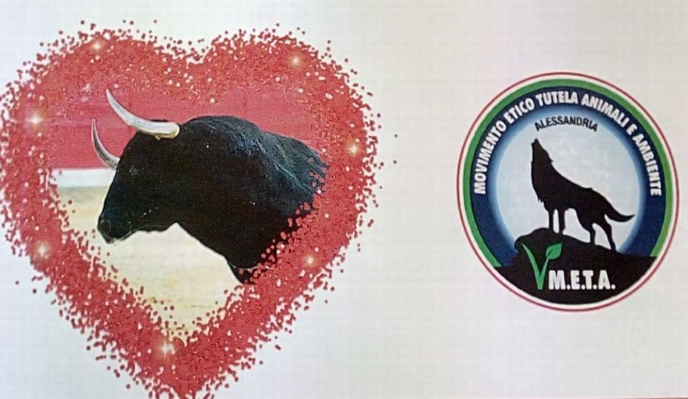 Al centro Commerciale Oasi una manifestazione per dire No ai combattimenti fra animali