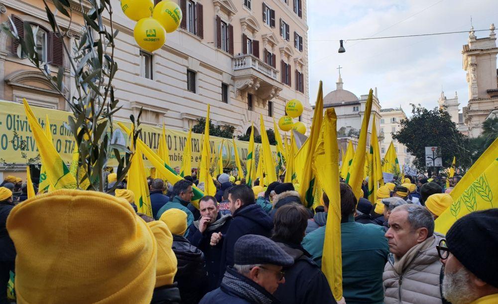 Gli agricoltori scendono in piazza a difesa dell'olio made in Italy