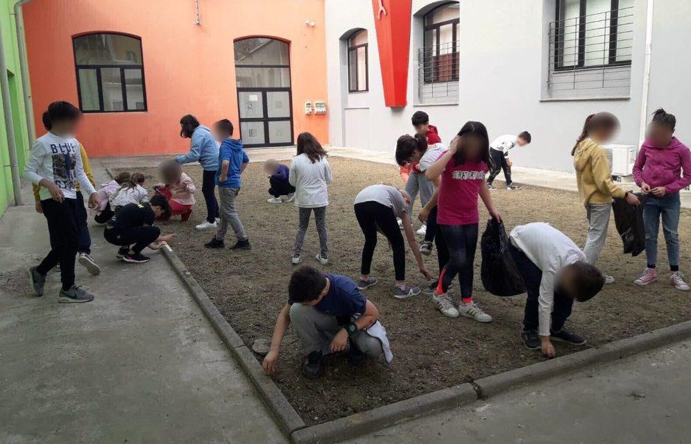 Gli alunni del Comprensivo B di Tortona faranno giardinaggio