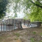 """Uno stagno per la città, il progetto didattico-digitale nel Giardino Botanico """"Dina Bellotti"""" di Alessandria"""