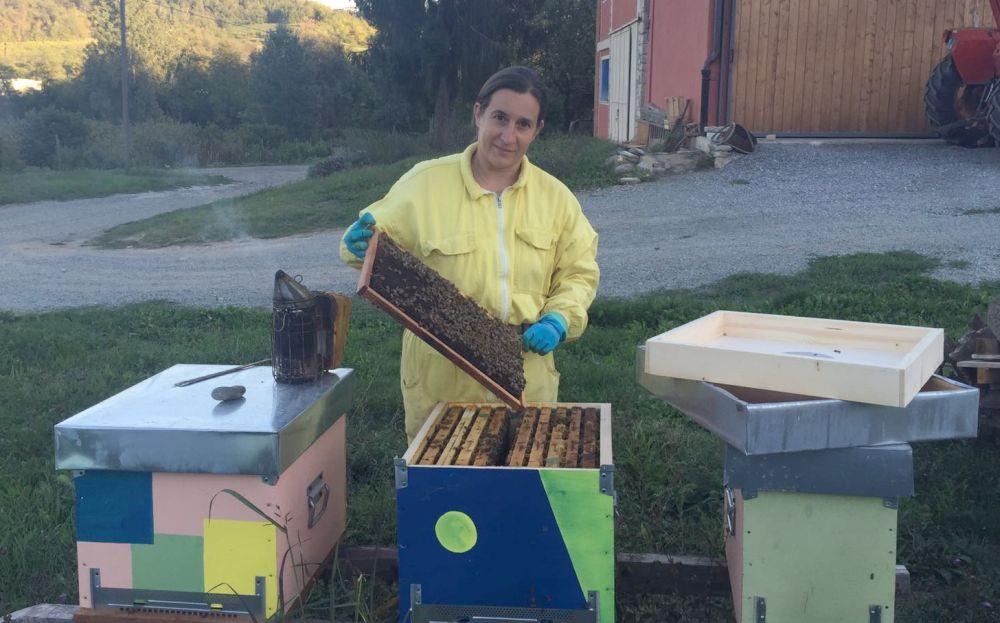 """Maltempo, allarme per le api nell'acquese: """"Dobbiamo nutrire le famiglie"""" dice DFaniela Ferrando"""