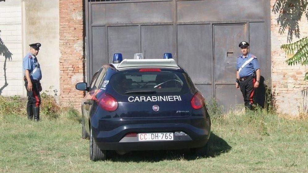 I carabinieri scoprono 16 cani in un canile abusivo a Viguzzolo rinchiusi in piccole gabbie e denutriti, gestore denunciato