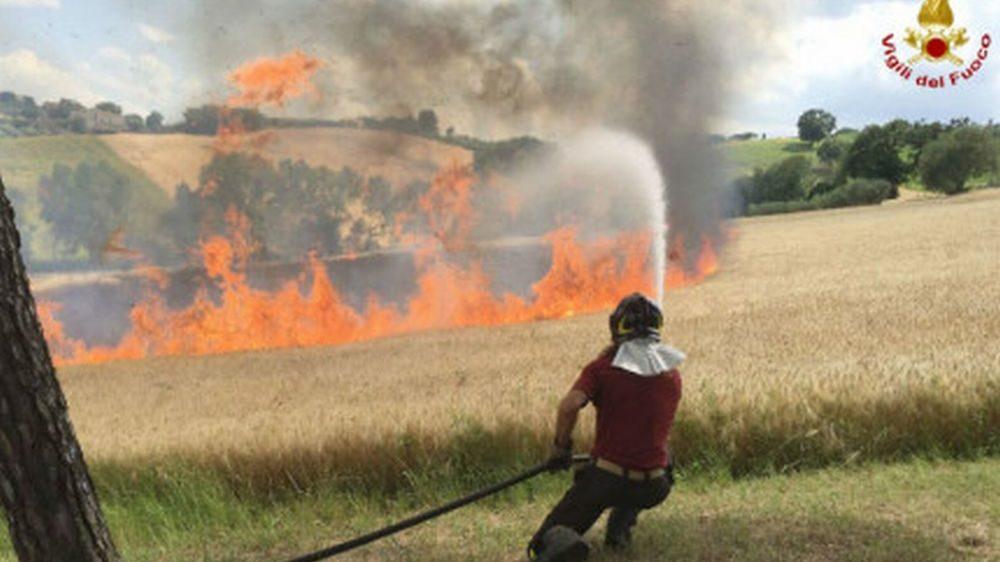 Il mistero degli strani incendi a Pontecurone: troppi e nelle stesse zone da giorni