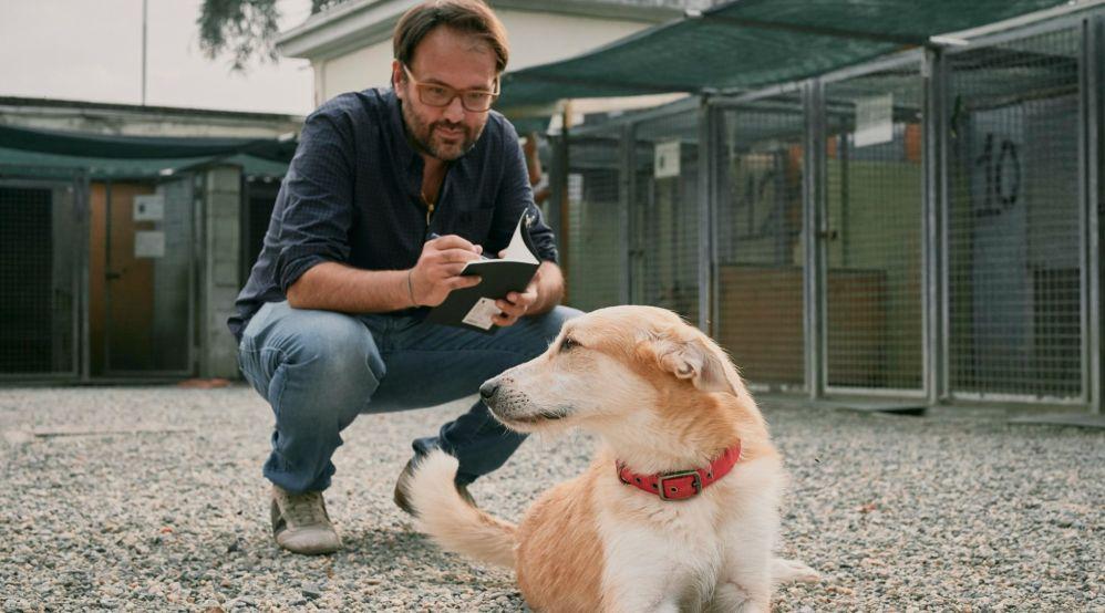Sabato ad Alessandria una mostra di cani di Alessandro Guasco