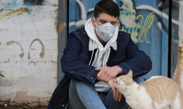 Coronavirus in Piemonte, aumentano i positivi. Il Bollettino odierno