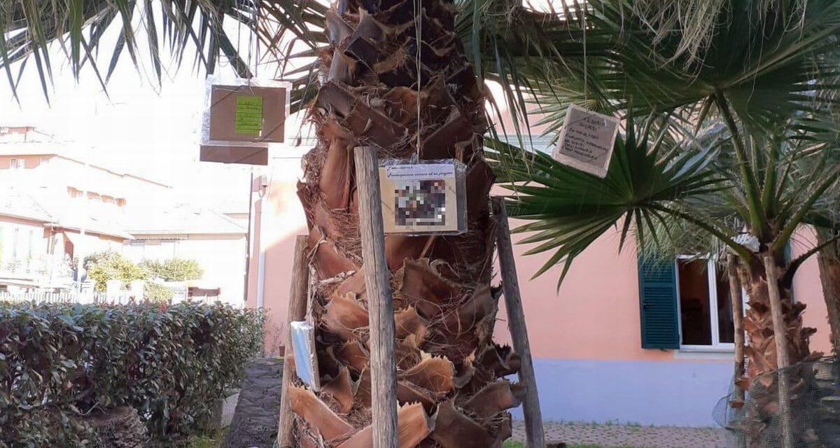 A San Bartolomeno Una mostra in giardino, con foto e pensieri per l'Infanzia