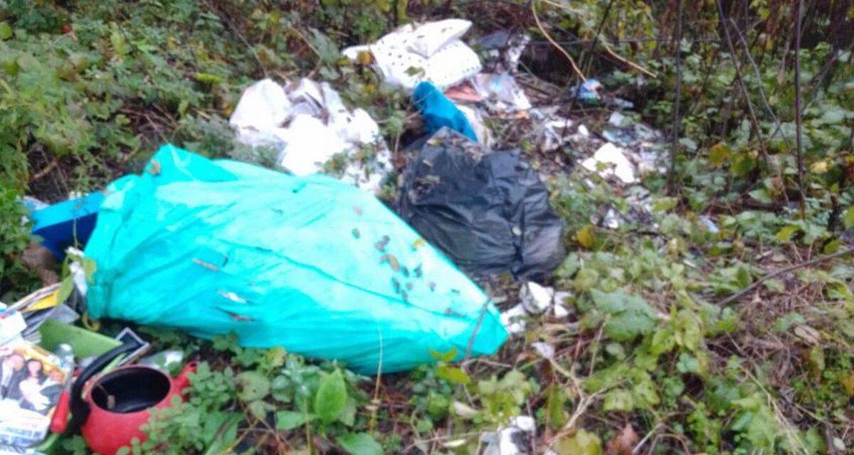 Abbandona questi rifiuti a predosa, Gestione Ambiebte lo scopre e paga 600 euro