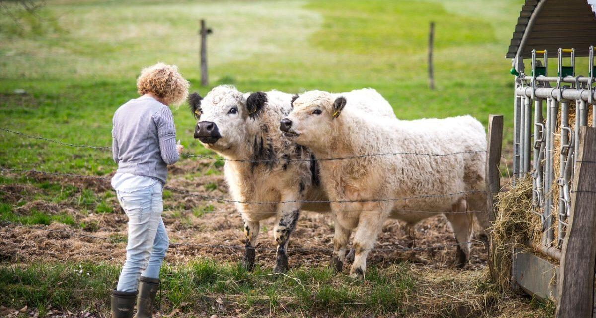 I giovani sempre più attratti dall'agricoltura