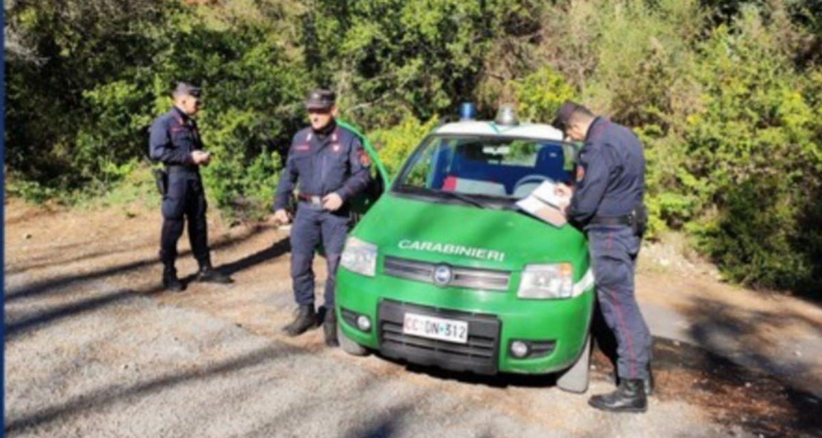 Ventimiglia, 18 mesi di carcere all'autore di 4 incendi